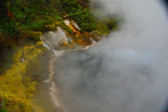 The cultural city of Rotorua is famous for hot springs and delightful mud pools. Photo by Ellen De Young, flickr