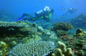 15 - Scuba Diving in the Andaman islands. Photo by Sailing-pucket.com