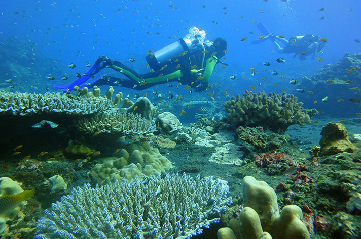 Incredible places to dive around the world: Scuba Diving in the Andaman islands. Photo by Sailing-pucket.com