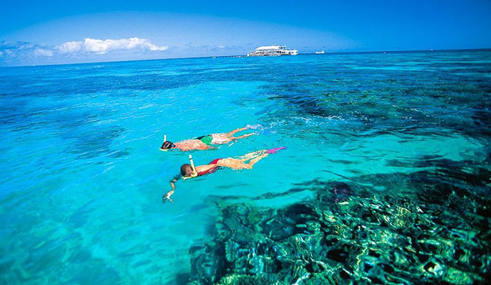 Snorkeling through the Great Barrier Reef. Photo by australiantraveller.com