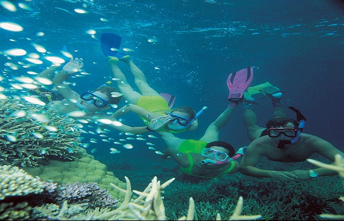 Snorkeling in the Great barrier reef Photo by Australian Tours R Us flickr