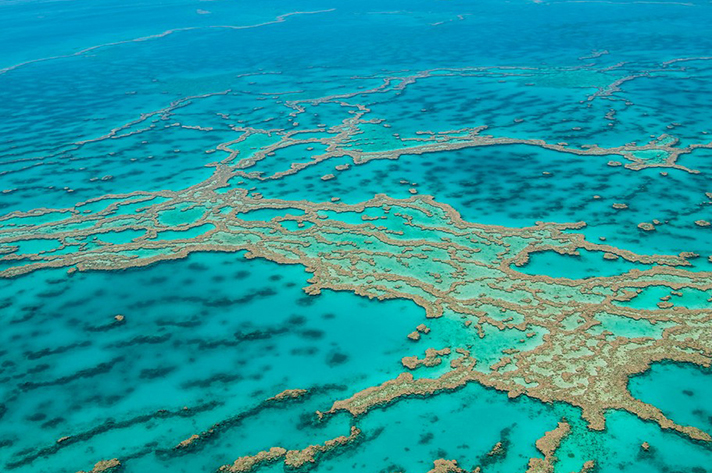 Incredible places to dive around the world: The Great Barrier Reef, Queensland. Photo by Druzi, flickr