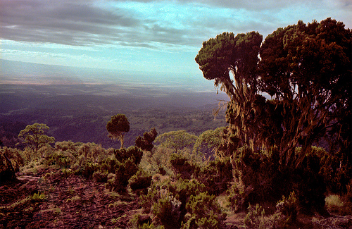 Mount Kenya and Forest Reserve. Photo by StaticImage, flickr.