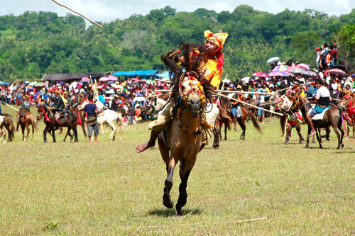 Horse festivals, Waikabubak. Photo via sumbarentcar.com
