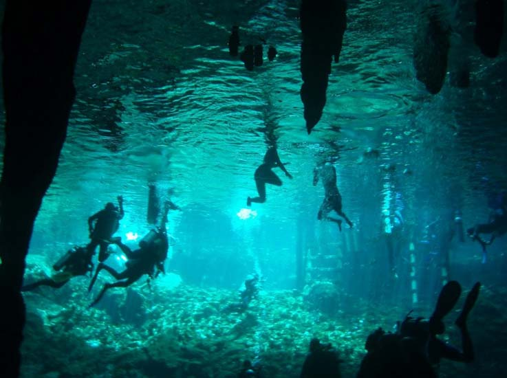 Swimmers and snorkelers exploring a Mexican cenote. Photo by, gobluetours.com