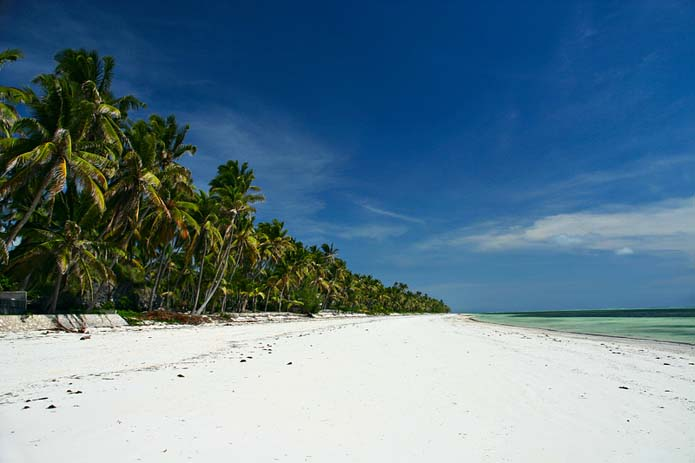 Coconut trees and white sand at Bwejuu. Photo via pbase.com