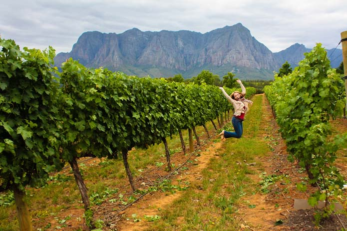 Vineyards in Stellenbosch, South Africa. Photo by thetravelbite.com