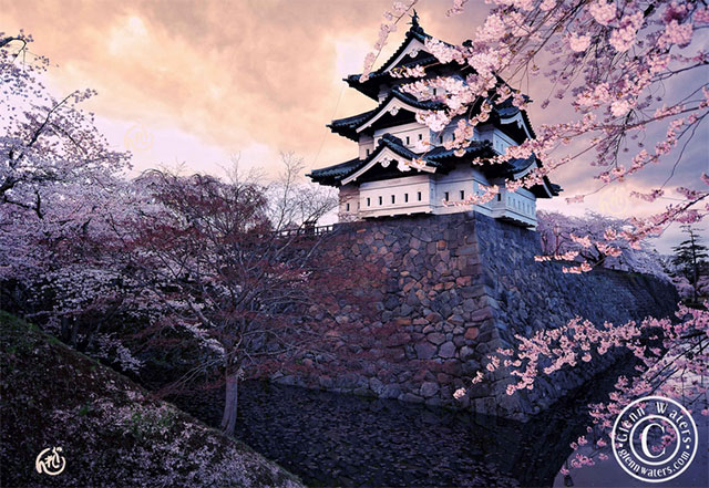 Fairy tale places you should visit: Hirosaki Castle, Japan. Photo by Glenn Waters