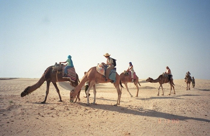 Camel trips can be difficult and demanding, but a rewarding experience. Photo by upyernoz, Flickr