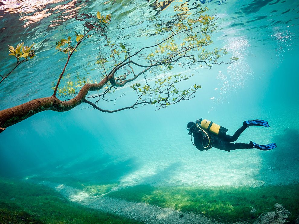 Dive into an underwater world. Photo by Marc Henauer, nationalgeographic.com