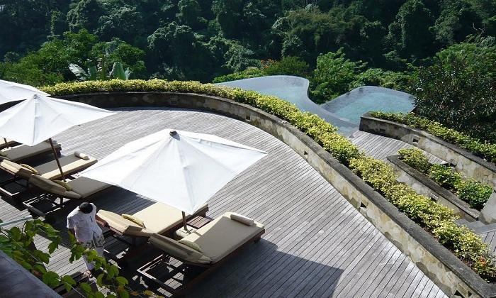 Lounge about on the decks above the treetops. Photo via dotawci.com