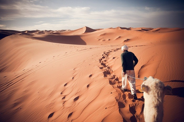 A guide leads a camel through Erg Chebbi nearby Merzoug. Photo by Chris Ford, Flickr