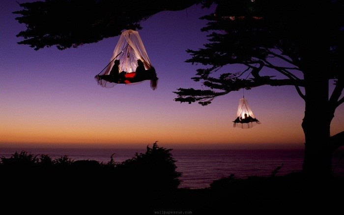 Tree camping is such a great way to see the most magnificent views