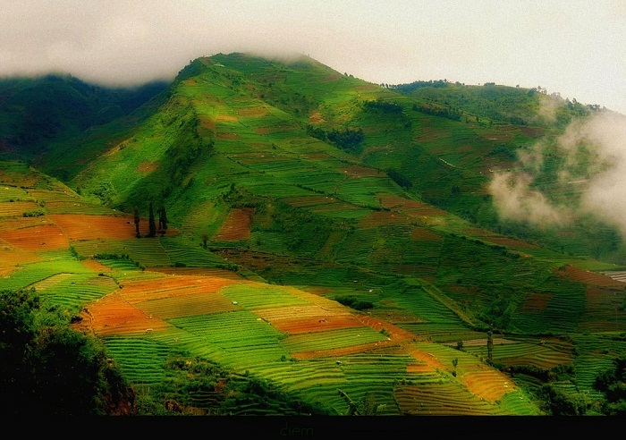 Java is well known for having some of the most lush country. Photo by Jose Javier.Java is well known for having some of the most lush country. Photo by Jose Javier.