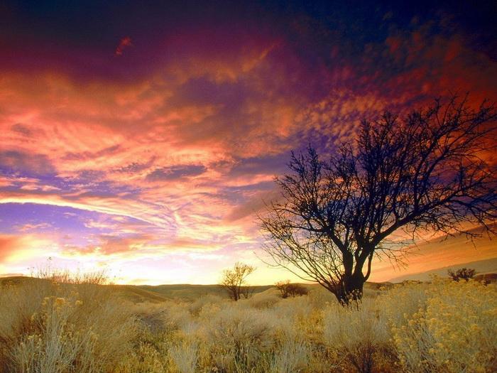 awesome-sky04