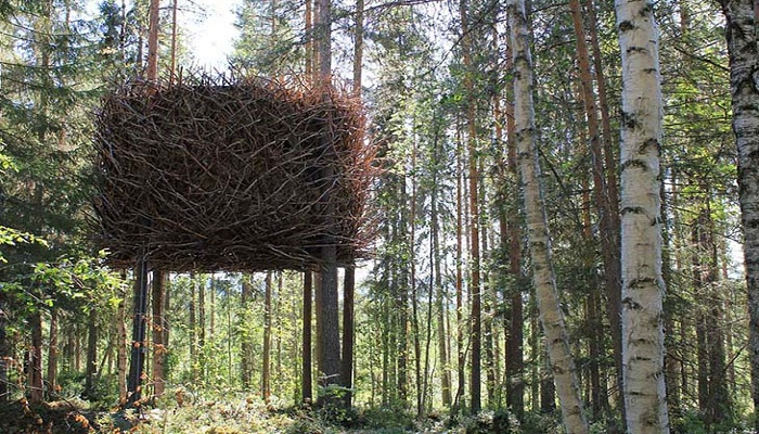 The Birds Nest Tree House Sweeden. Photo by boredpanda.com