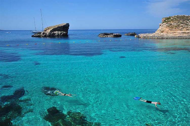 Go underwater to see some marine friends. Photo via www.visitgozo.com