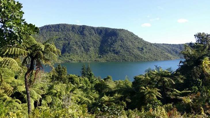 Lake Rotokakahi or the Green Lake is naturally stunning.