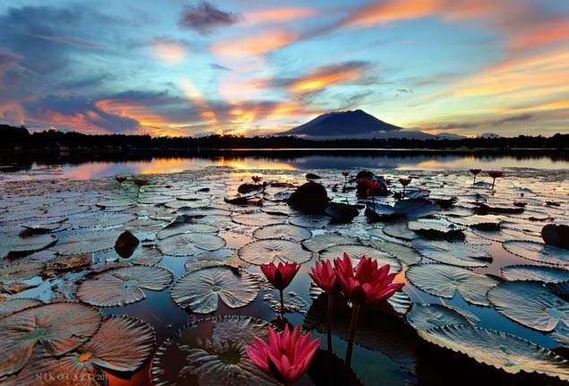Sampaloc Lake is an inactive volcanic maar in the Philippines. Photo by Natashapnini