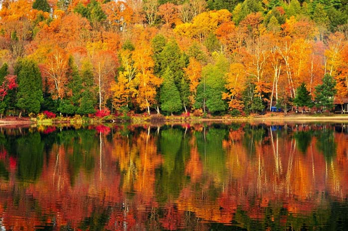 Canada's Alberta and Laurentians regions are the best places to view gorgeous autumn colours. Image via Get in Travel