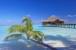 11 Cheap overwater bungalow resorts from around the world