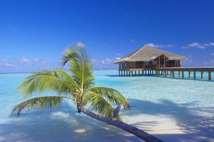Medhufushi Island Resort in the Maldives. Photo via ewtc