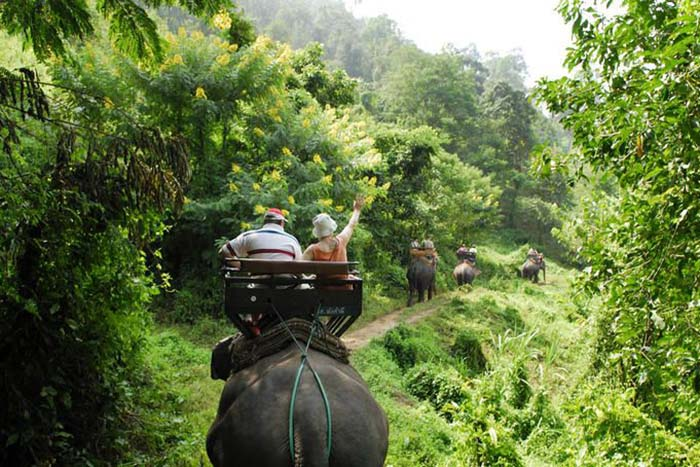 The Thai jungle is rugged, uncomprimising and amazing. Photo via lonelyplanet