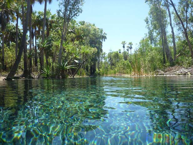 Mataranka Hot Springs, Australia. Photo via nomaddreaming