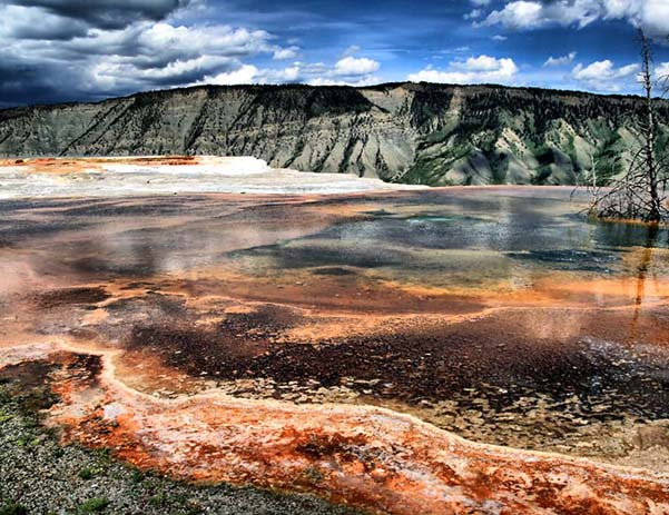 Mammoth Hot Springs, Yellowstone. Photo via wikimedia