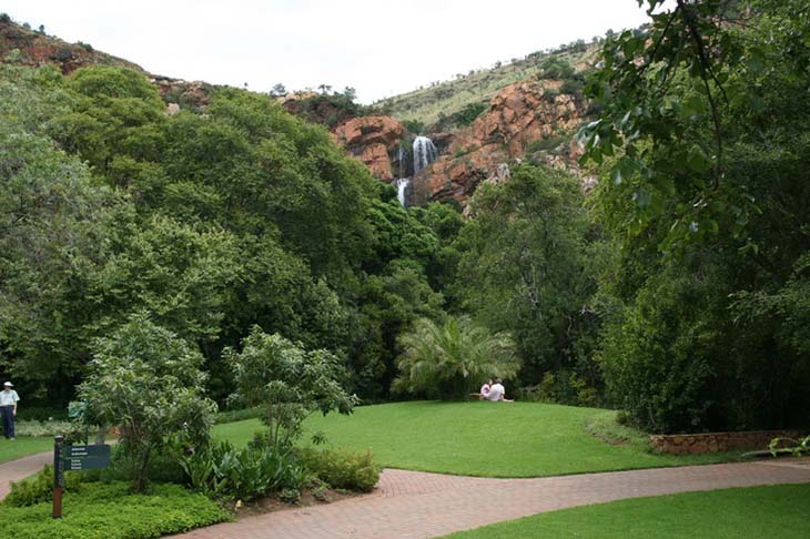 The Walter Sisulu National Botanical Garden, with Witpootjie waterfall in the backdrop. Photo via Adele on pinterest