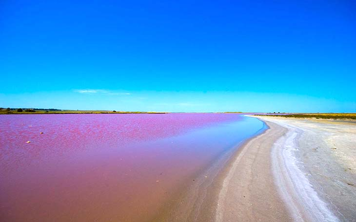 Lake Retba, Africa. Photo by 4hdwallpapers.com